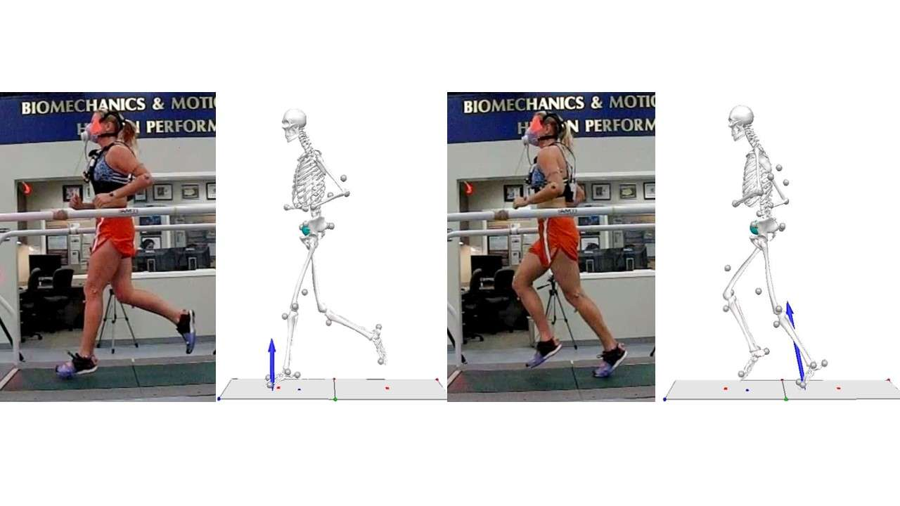 Runner and skeleton for front research page